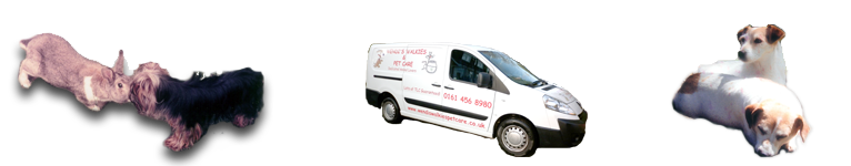 Wendi's Walkies Pet Care